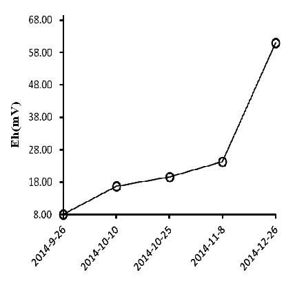 Fig. 4 – Variazione del potenziale. Redox del suolo (Eh)