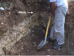 Anno 2007 - Lo strato fertile del terreno arriva alla profondità di circa 60 cm